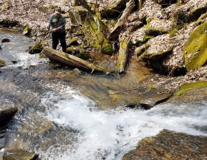 Don works a plunge pool in search of trout.